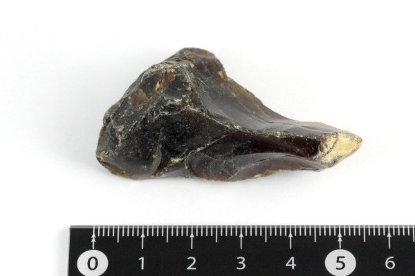 ブルーアンバー(天然琥珀) 原石 8.6g