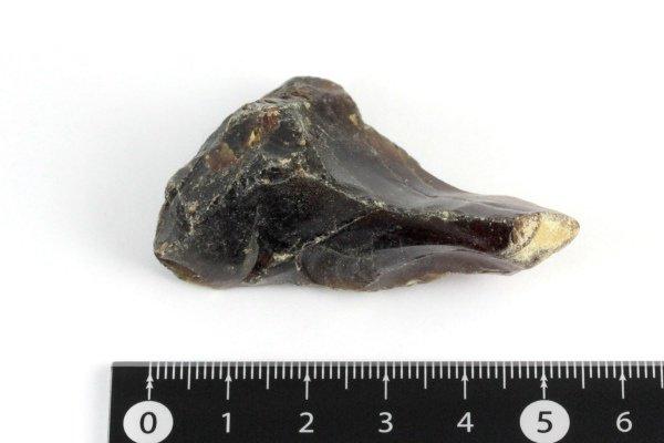 ブルーアンバー(天然琥珀) 原石 20.2g
