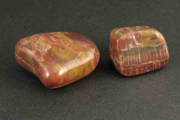 珪化木 原石 磨き 2個セット 76g