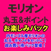 <img class='new_mark_img1' src='//img.shop-pro.jp/img/new/icons51.gif' style='border:none;display:inline;margin:0px;padding:0px;width:auto;' />【数量限定8点!】内モンゴル産 モリオン 丸玉&ポイント お楽しみパック (MY4-18-11)