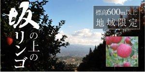 坂の上のリンゴ(ふじ)3Kg