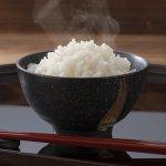 【令和2年産】秋田県大潟村産 特別栽培米最高級あきたこまち10kg