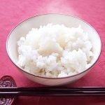 【令和2年産】秋田県大潟村産 特別栽培米ミルキープリンセス25kg