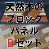天然木の壁用ブロックパネル【Bセット】世界の天然木10材種*各2枚=20枚入り(約1.61平米)