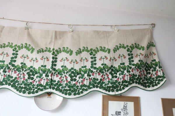 タチアオイのカーテン