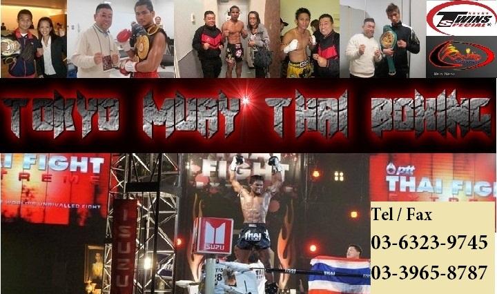 ボクシンググローブ、ムエタイ、キック、TWINS、TOP KING、RAJA、格闘技全般