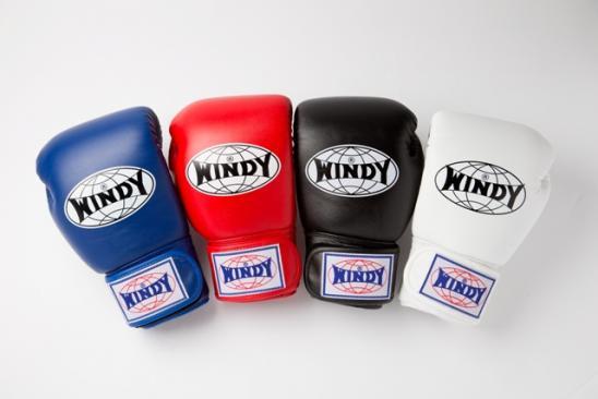66f52c9605b8f WINDY ボクシンググローブ - ボクシンググローブ、ムエタイ、キック ...
