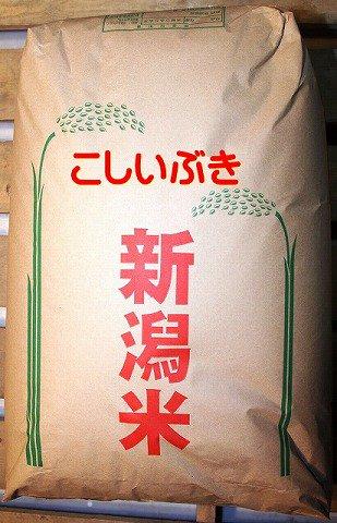 こしいぶき玄米30kg