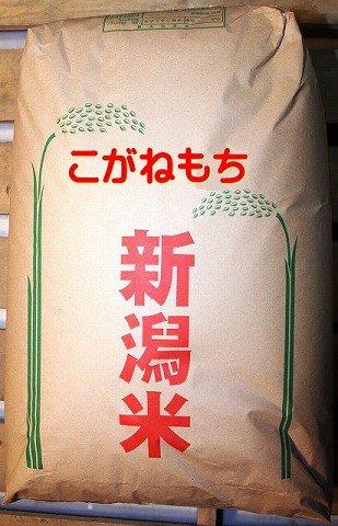 こがねもち(黄金糯)白米20kg