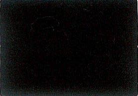 メルトン 黒 50m乱巻