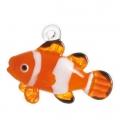 熱帯魚 浮玉