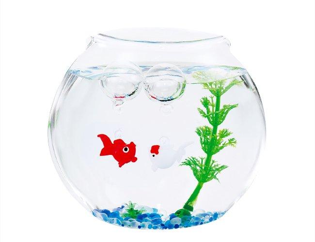 はんなり金魚セット 赤&白
