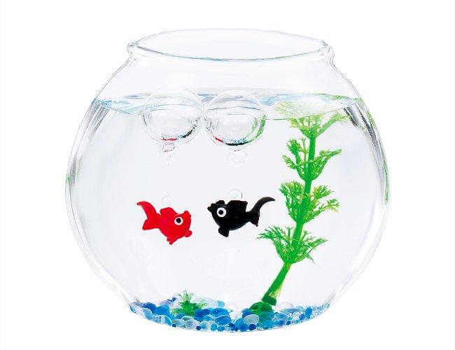 はんなり金魚セット 赤&黒