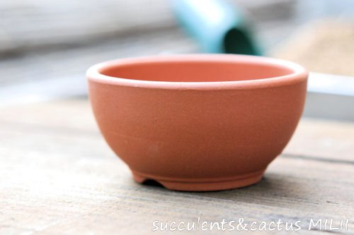 ボウル型ミニ鉢 2.5号