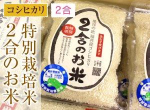 特別栽培米コシヒカリ 2合のお米