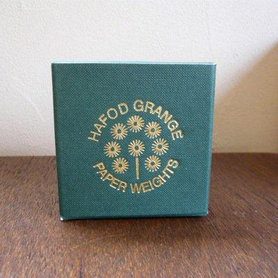 Hafod Grange Paperweights  [Rhodanthe] 3