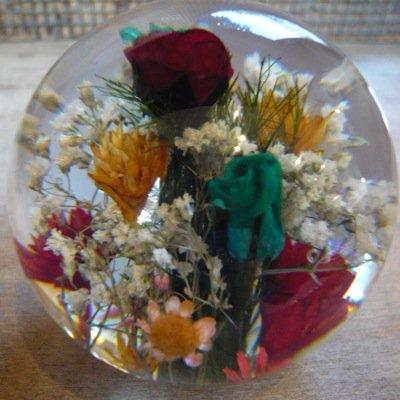 Hafod Grange Paperweights [Mixed Flora] 2