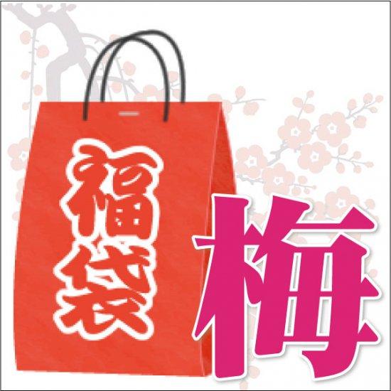 残り3個≪予約開始≫【梅】レアアイテム福袋