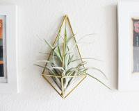 HANDMADE SAM*MADE | THE PLANTER | AIR PLANT HOLDER (壁掛け鉢) | プラントホルダー