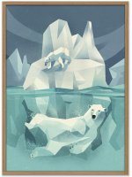 HUMAN EMPIRE | DIETER BRAUN | SWIMMING POLAR BEAR | ポスター (50x70cm)