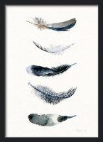 THE CLAY PLAY | WATERCOLOR PAINTED BIRD FEATHERS (no.478) | A2 アートプリント/ポスターの商品画像