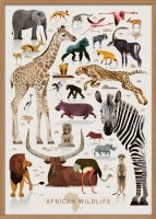 HUMAN EMPIRE | DIETER BRAUN | AFRICAN WILDFIRE POSTER | ポスター (50x70cm)の商品画像