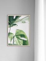 【オーダーメイド】NOUROM | MONSTERA #1 | アートプリント/ポスターの商品画像