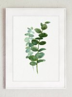 COLOR WATERCOLOR | Eucalyptus Canvas Fine Art Print #3 | A3 アートプリント/ポスター