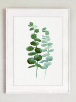 COLOR WATERCOLOR | Eucalyptus Canvas Fine Art Print #4 | A3 アートプリント/ポスター