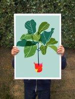 ANEK | Fiddle Leaf Fig Tree (green) Art Poster | アートプリント/ポスター (50x70cm)【北欧 カフェ レストラン インテリア おしゃれ】の商品画像