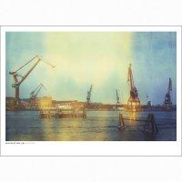 DAN ISAAC WALLIN   KRANARNA   フォトグラフィ/ポスター (50x70cm)