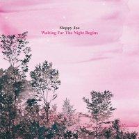 【特典付】SLOPPY JOE | WAITING FOR THE NIGHT BEGINS (CD)の商品画像