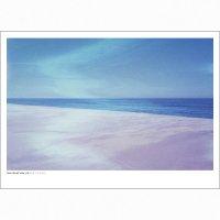 DAN ISAAC WALLIN | PACIFICO 313 | フォトグラフィ/ポスター (50x70cm)の商品画像