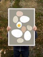 ANEK | Eggs Poster | アートプリント/ポスター (50x70cm)【北欧 カフェ レストラン インテリア おしゃれ】の商品画像