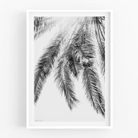 MICUSH | PALM LEAVES | アートプリント/ポスター (30x40cm)【北欧 シンプル インテリア おしゃれ】の商品画像