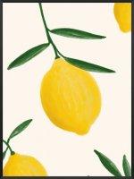 PROJECT NORD | FRESH LEMONS POSTER | アートプリント/ポスター (50x70cm)【北欧 デンマーク おしゃれ】の商品画像