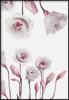 GLAM POSTERS | EUSTOMA FLOWER POSTER | アートプリント/ポスター (30x40cm)【北欧 リビング インテリア】の商品画像