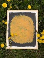 FINE LITTLE DAY   DANDELION POSTER   アートプリント/アートポスター (40x50cm) 北欧 インテリア デザイン リビングの商品画像