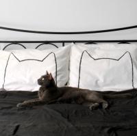 【ネコポス送料無料】XENOTEES | CAT NAP PILLOW CASE SET | 枕カバー/ピローケース(2枚セット)の商品画像