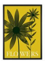 HUMAN EMPIRE   SUMMER FLOWERS   ポスター (50x70cm)の商品画像