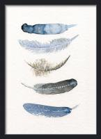 THE CLAY PLAY | WATERCOLOR BIRD FEATHERS (blue/black) | A4 アートプリント/ポスター