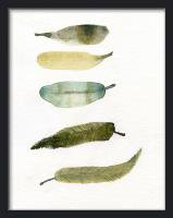 THE CLAY PLAY | WATERCOLOR BIRD FEATHERS (green/yellow) | A3 アートプリント/ポスター
