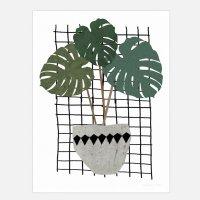 SEVENTY TREE | MONSTERA | アートプリント/ポスター (50x70cm)の商品画像