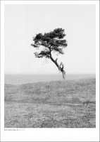 DAN ISAAC WALLIN | HAVANG BW | フォトグラフィ/ポスター (50x70cm)の商品画像