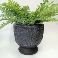 アラベスクカップ CN-GFB216