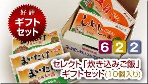 お客様感謝セール【セレクト「炊き込みご飯」ギフトセット(10個入り)】