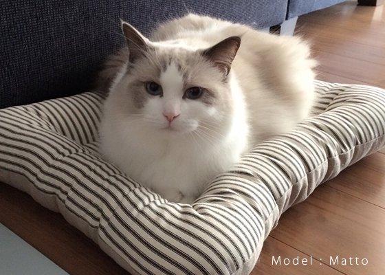 【受注製作】猫用ベッド/USコットン サマーランド