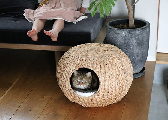 OZABUクッション カーキ / For Cat