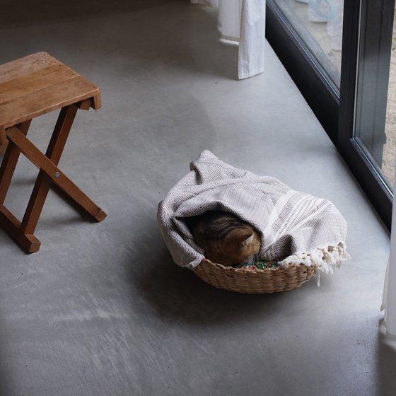 トルコ 手織りのコットンケット【ベージュボーダー】