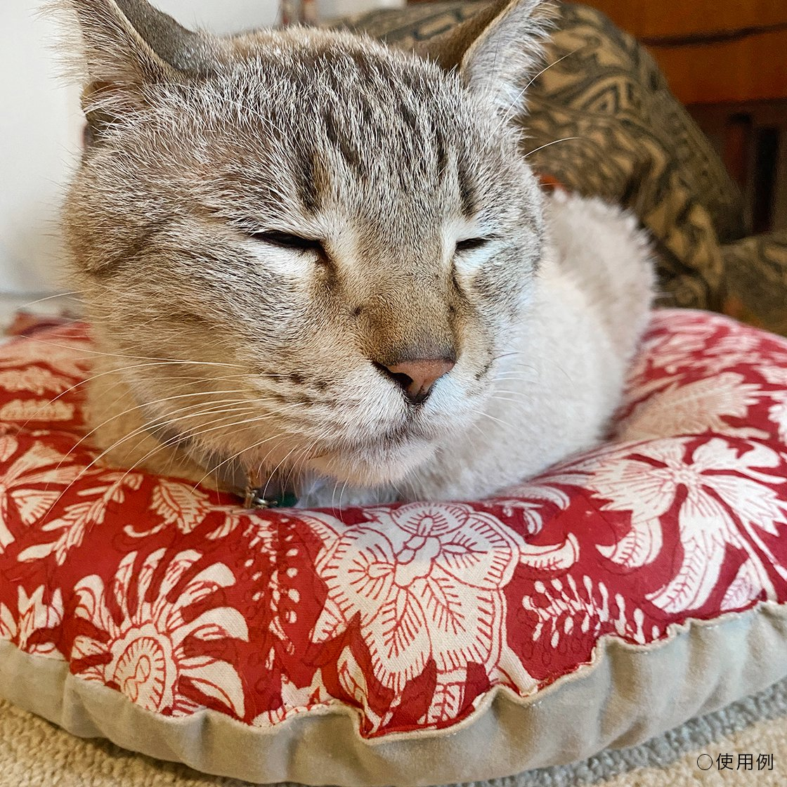 <img class='new_mark_img1' src='https://img.shop-pro.jp/img/new/icons57.gif' style='border:none;display:inline;margin:0px;padding:0px;width:auto;' />OZABUクッション-Lサイズ【ハンドブロック/レッド系 #2】 /For Cat